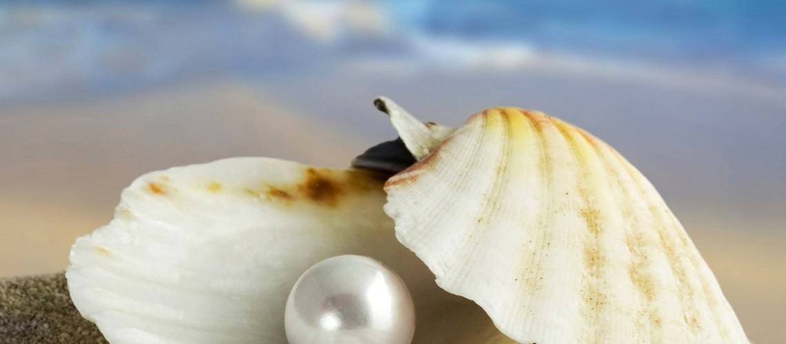 La perla preziosa