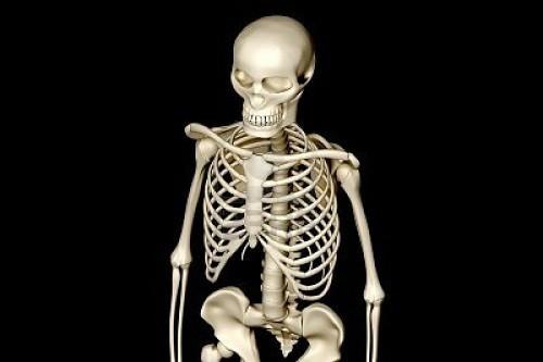 lo scheletro riprende vita e parla, ma è un'anima dannata