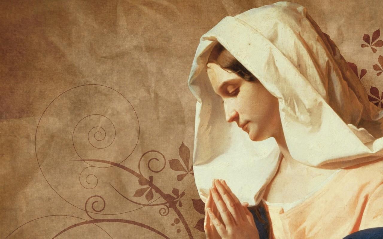 1 Giorno di novena a Maria Immacolata