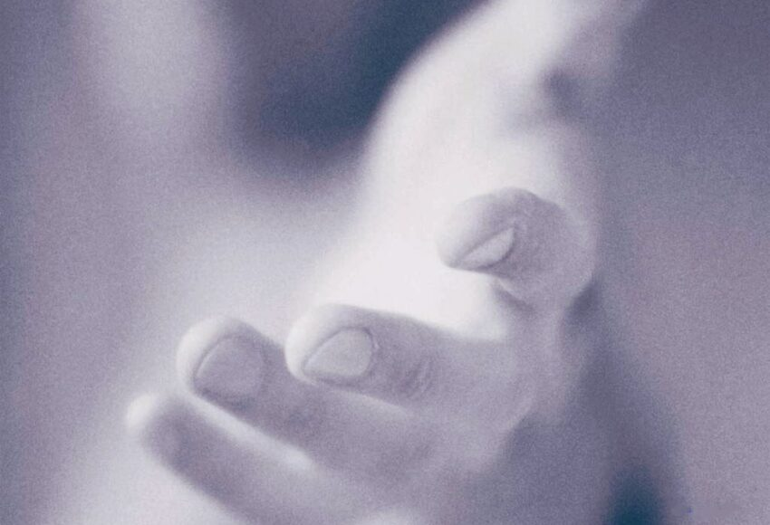 Dio è umiltà senza umiltà non vi è vita cristiana