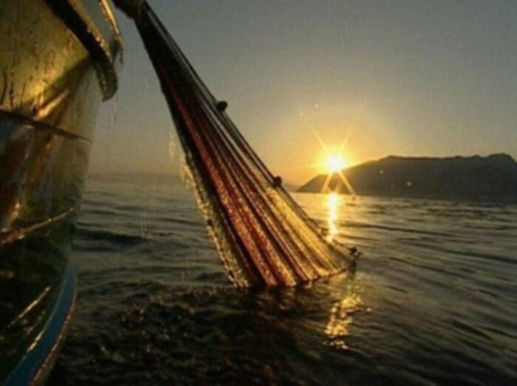 Prendi il largo e cala le reti per la pesca