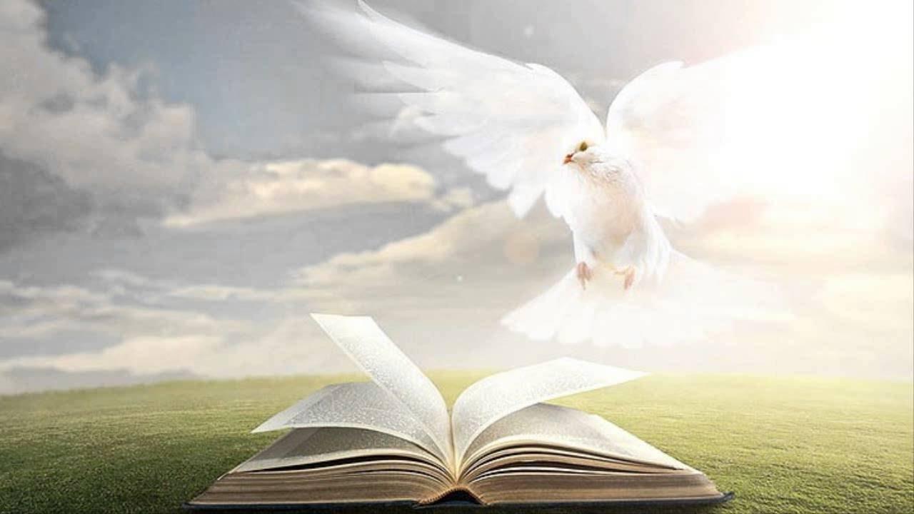 Ottavo giorno di novena: Spirito d'Amore