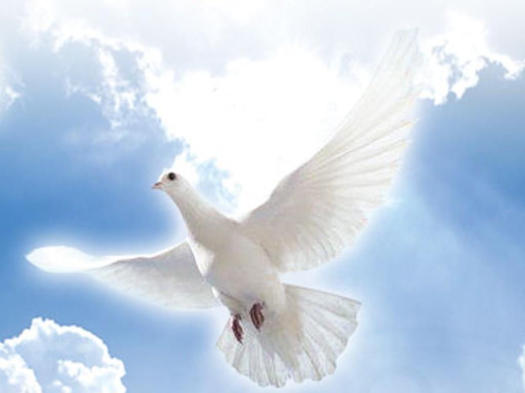 Terzo giorno di novena allo Spirito Santo