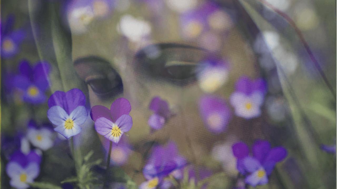Una coroncina di violette per Maria per dirle Auguri
