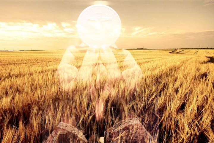 L'Ostia bianca; dal campo all'altare