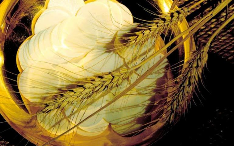 Pane Vivo: Gesu Verità da conoscere ancora oggi