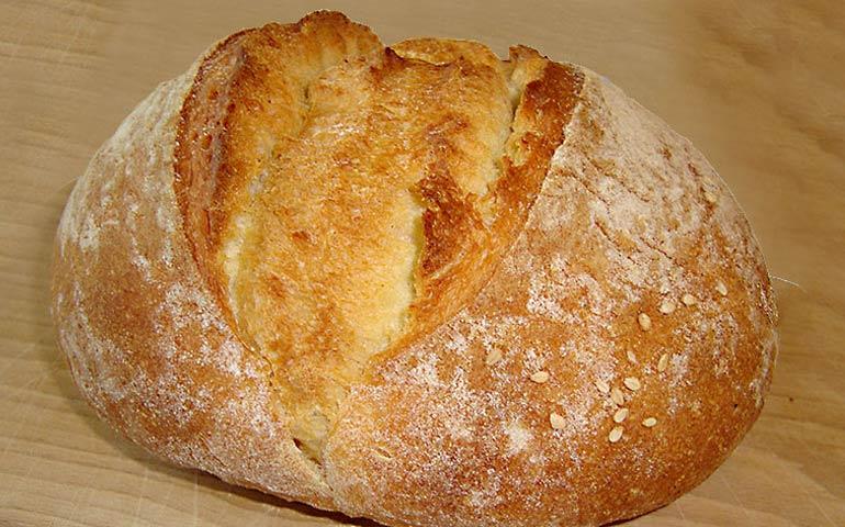 Gesù è il pane vivo e mangiando questo pane noi vivremo