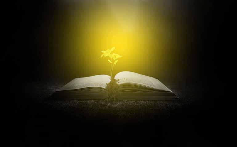 Riscopriamo la meditazione della Parola di Dio