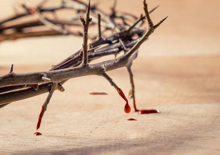 sangue preziosissimo di Cristo e suor Antonietta Prevedello
